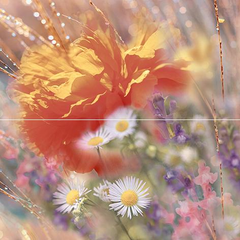 Купить Керамическая плитка Ceramica Classic Flowers Панно P2-2D205 40х40 (из 2 плиток), Россия