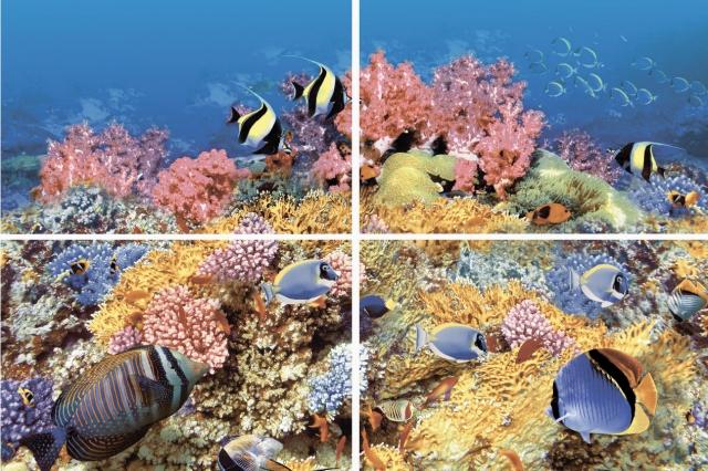 Купить Керамическая плитка Нзкм (Terracotta) Alba Reef-1 4 элемент. панно 40x60, Россия
