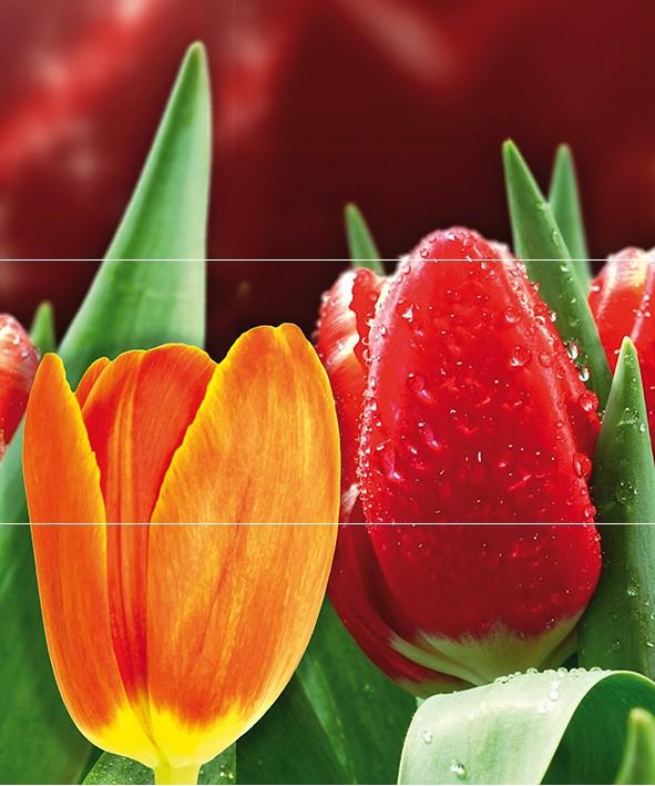 Купить Керамическая плитка Cerrol Syntia Tulip А Панно (из 3пл) 60x50, Польша