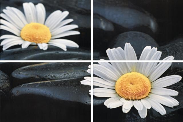 Купить Керамическая плитка Нзкм (Terracotta) Alba Spa 4 эелемент. панно 40x60, Россия