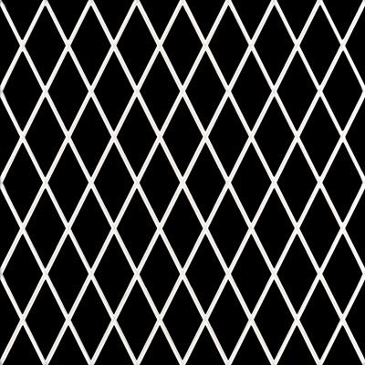 Купить Керамическая плитка Cas Ceramika Decor Black&White Mix 9 mm Декор 20x20, Испания