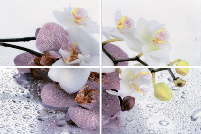 Купить Керамическая плитка Нзкм (Terracotta) Alba Orchid 4 элемент. панно 40x60, Россия
