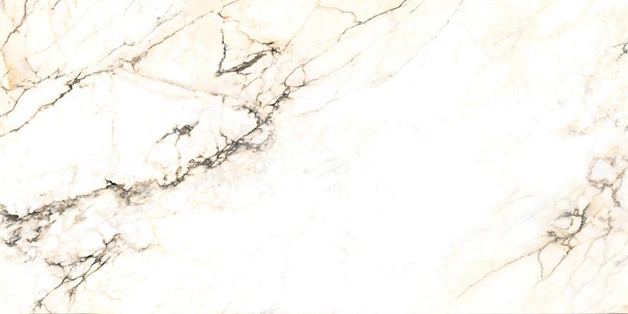 Купить Керамогранит Ariostea Marmi (6mm) Bianco Paonazzetto Lucidato Shiny 75x150, Италия