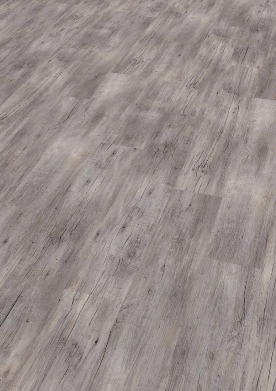 Купить Ламинат Wineo 800 Wood бесклеевой DLC00082 Сосна Рига Яркая, Witex (Wineo), Германия