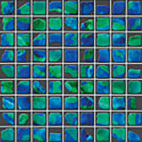 Купить Керамическая плитка Naxos Living Rock Mos. Monreale мозаика 30x30, Италия