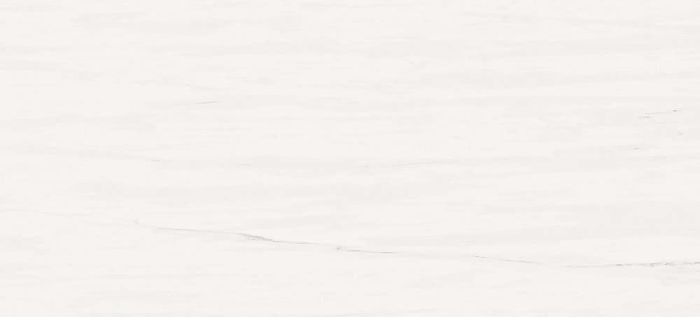 Купить Керамическая плитка Atlas Concorde Marvel Stone Bianco Dolomite 50х110, Италия
