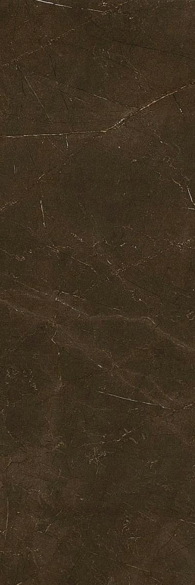 Купить Керамическая плитка Италон Charme Wall Project Bronze (600010000417) Настенная 25x75, Россия