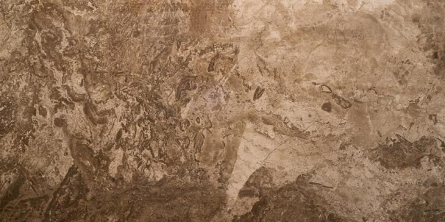 Керамогранит Seranit Fossil Brown Full Lappato 60x120, Турция  - Купить