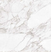 Керамогранит Argenta Carrara White Shine RC 60x60